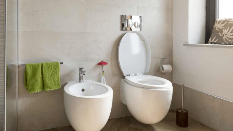 Что лучше выбрать: биде или гигиенический душ