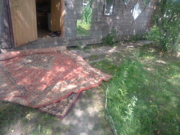 Нашла у мусорных контейнеров 2 советских ковра. Показываю как я их применила на даче