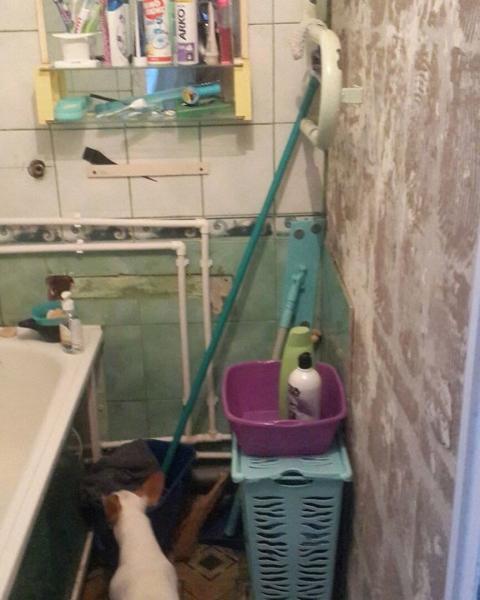 Из унылой ванной комнаты в роскошное «спа на дому» в скандинавском стиле (фото переделки)