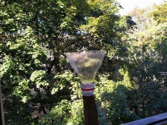 Как я использую горлышки от пластиковых бутылок в быту и на даче