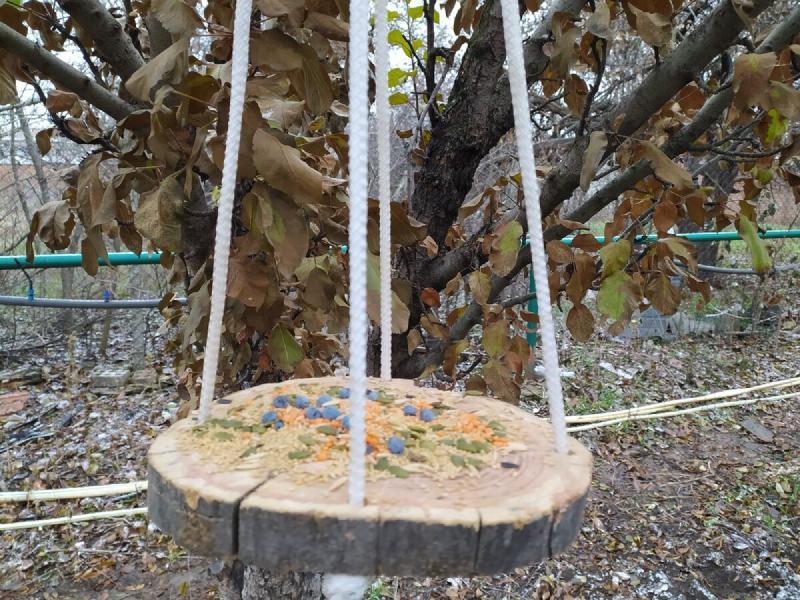 Показываю, какой полезный декор мы сделали для своего сада. Соседям и гостям наше творчество понравилось