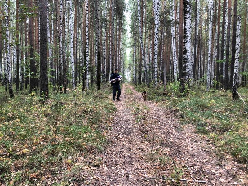 Нашел в лесу заброшенный родник. Показываю, как выглядит и что хочу с ним сделать