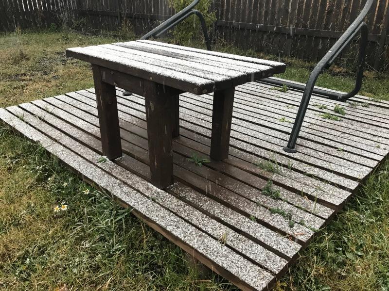 Зима пришла! Первый снег и подготовка участка к морозам